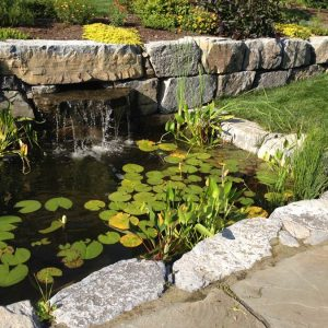 Custom Stone Waterfall and Pond