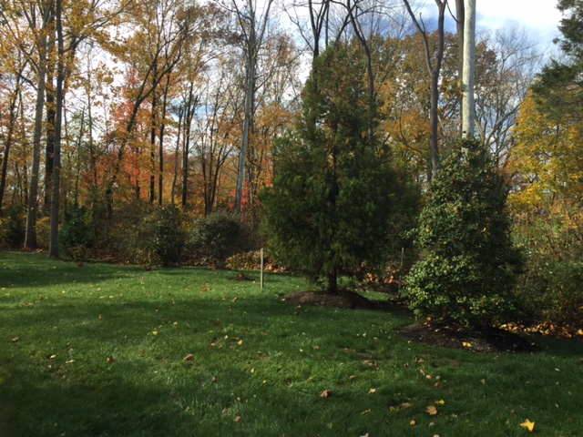 landscape design in Mainline, PA
