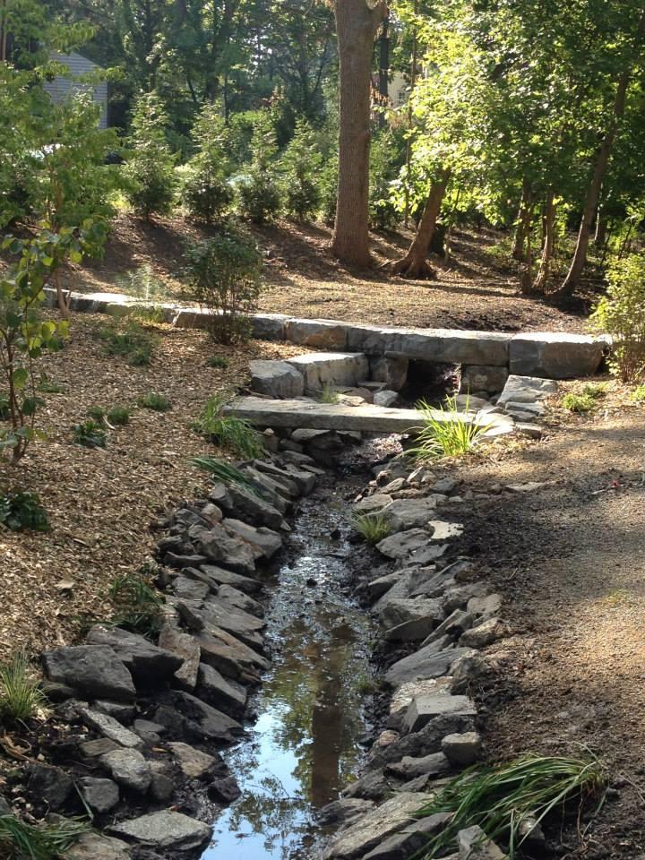 Stream Renovation