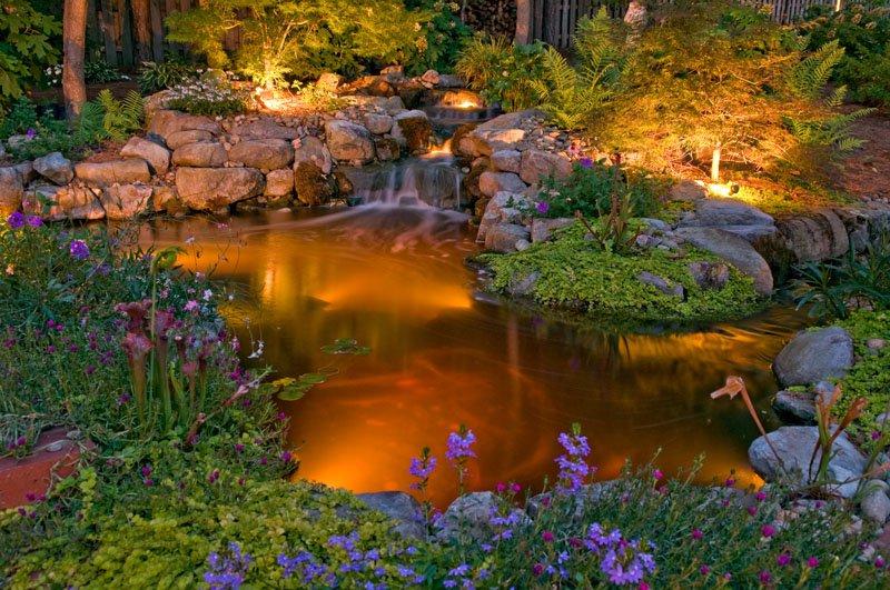 Nightscape Landscape Lighting Service