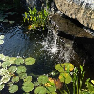 Custom Stone Waterfall and Pond