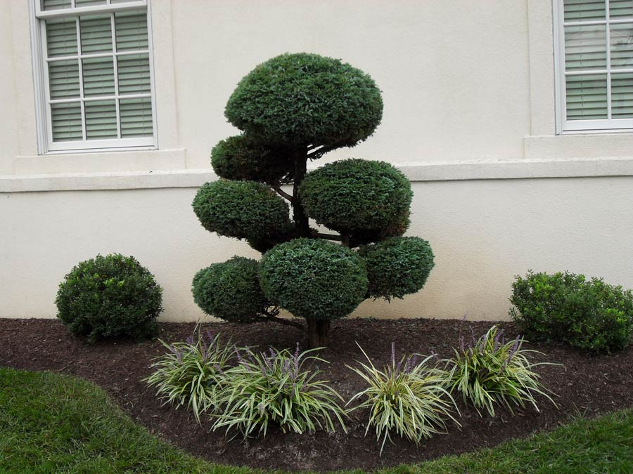 Landscaping Company Garnet Valley, PA