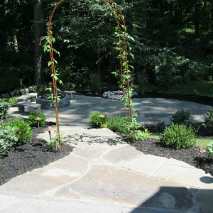 Backyard Landscape and Hardscape