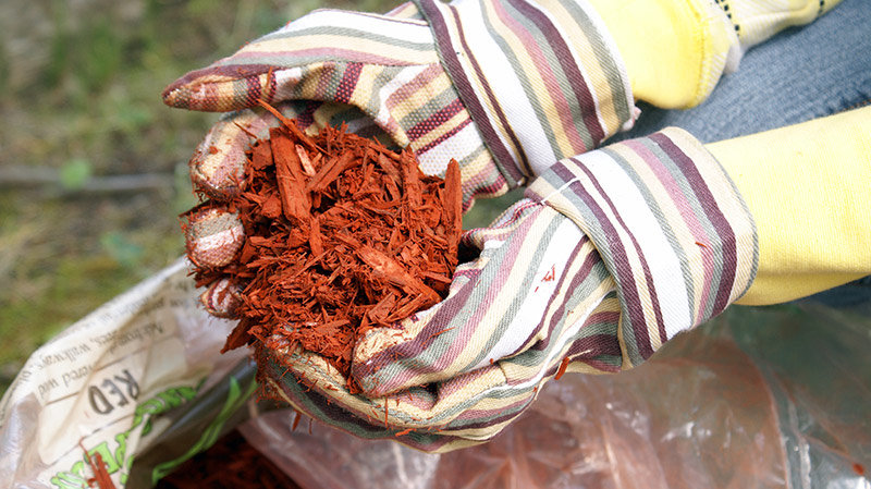 Dyed Red Mulch Colorant